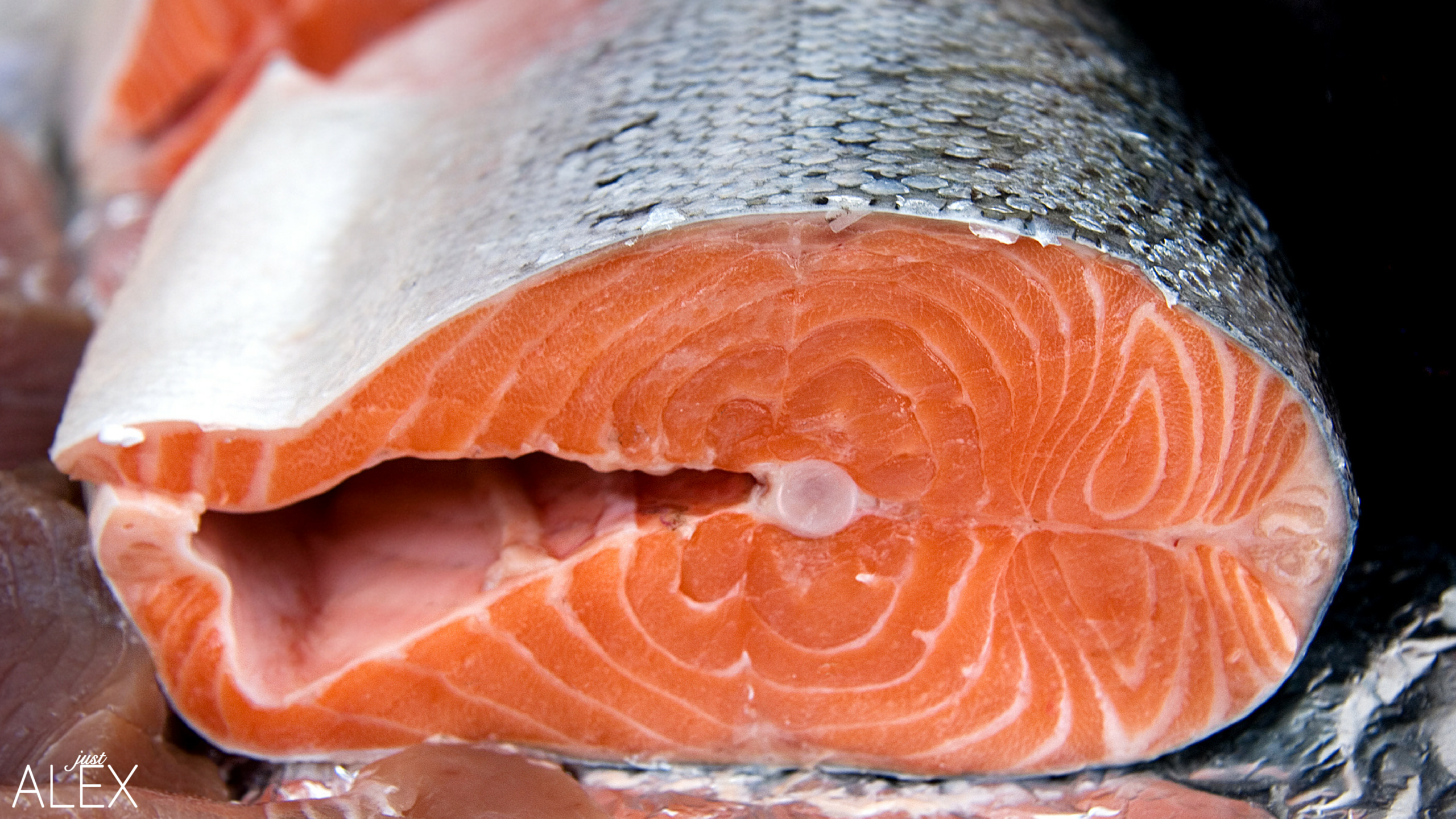 Why gmo salmon is bad just alex alexandria will for Why fish is bad for you